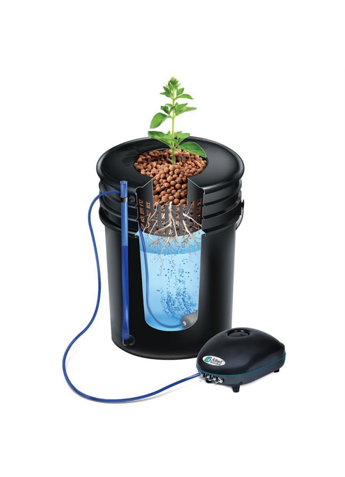 ALFRED DWC 2-PLANT SYSTEM