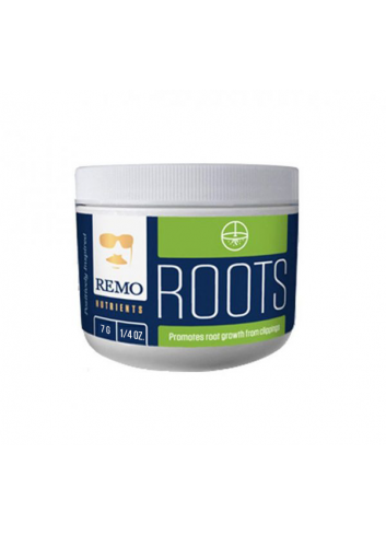 REMO'S ROOTS 7 GRAM 16 / BOX